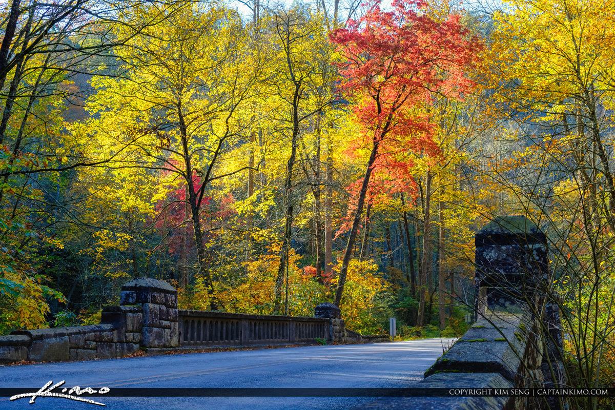 Stone Bridge Autumn Blue Ridge Parkway Moore Cove Falls Trail Br
