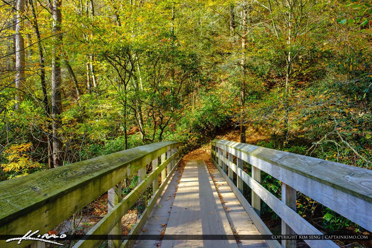 Wooden Bridge Blue Ridge Parkway Moore Cove Falls Trail Brevard