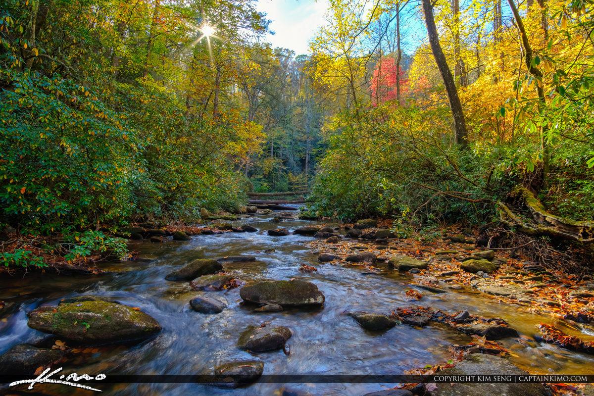 Looking Glass Creek Blue Ridge Parkway Moore Cove Falls Trail Br