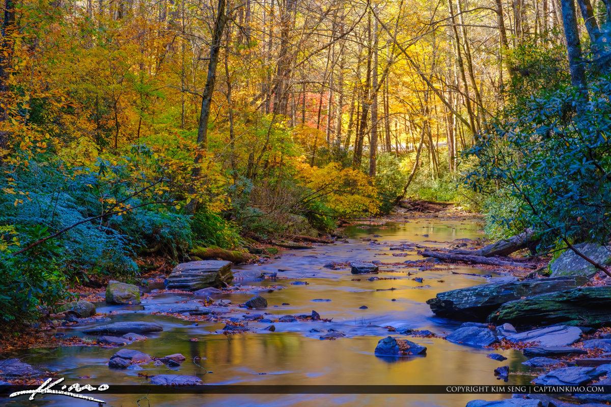Fall Colors Looking Glass Creek Blue Ridge Parkway Brevard North