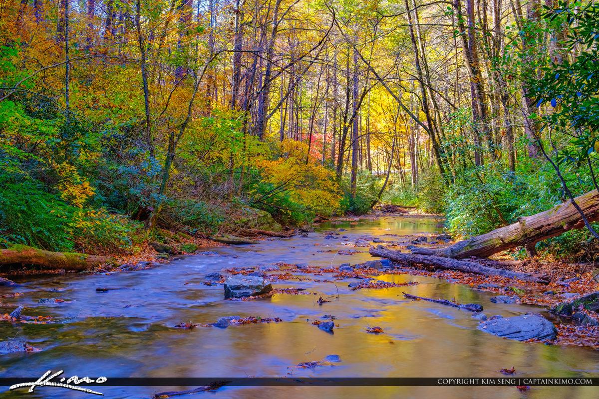 Autumn Looking Glass Creek Blue Ridge Parkway Brevard North Caro