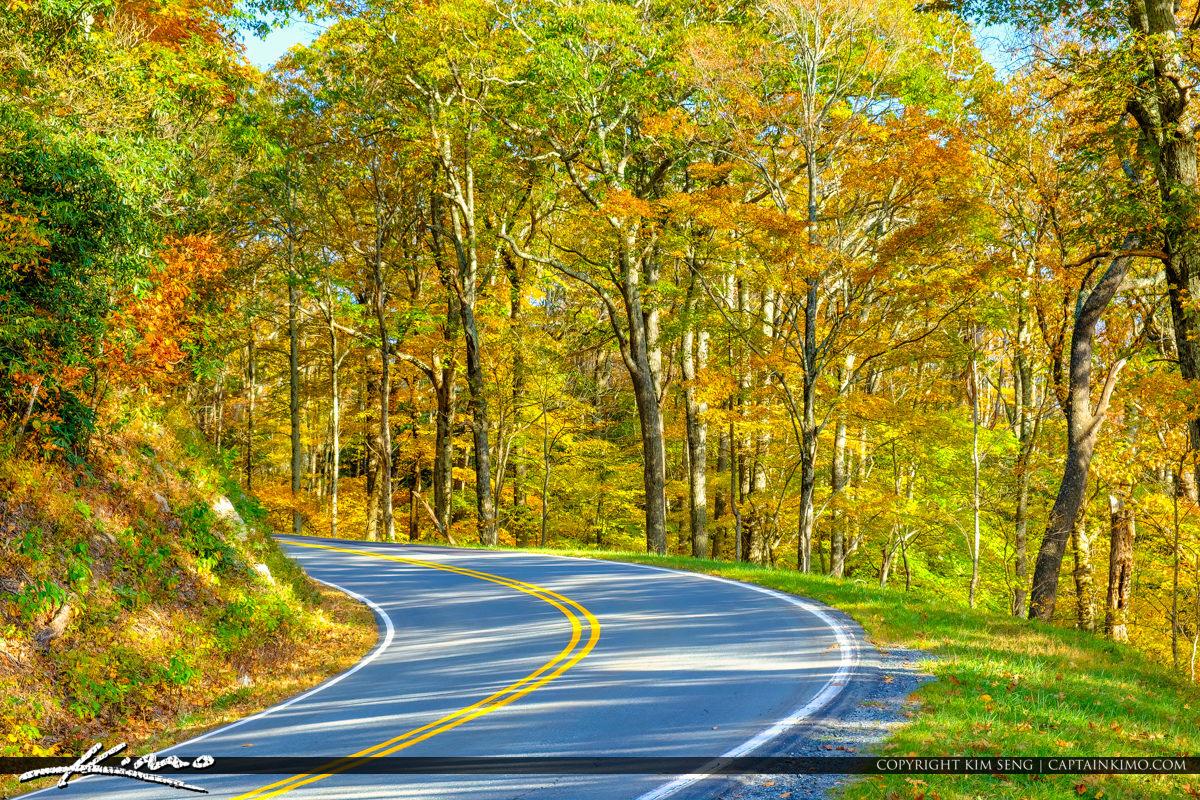 Blue Ridge Parkway Road Fall Colors Beautiful Orange Colors Nort