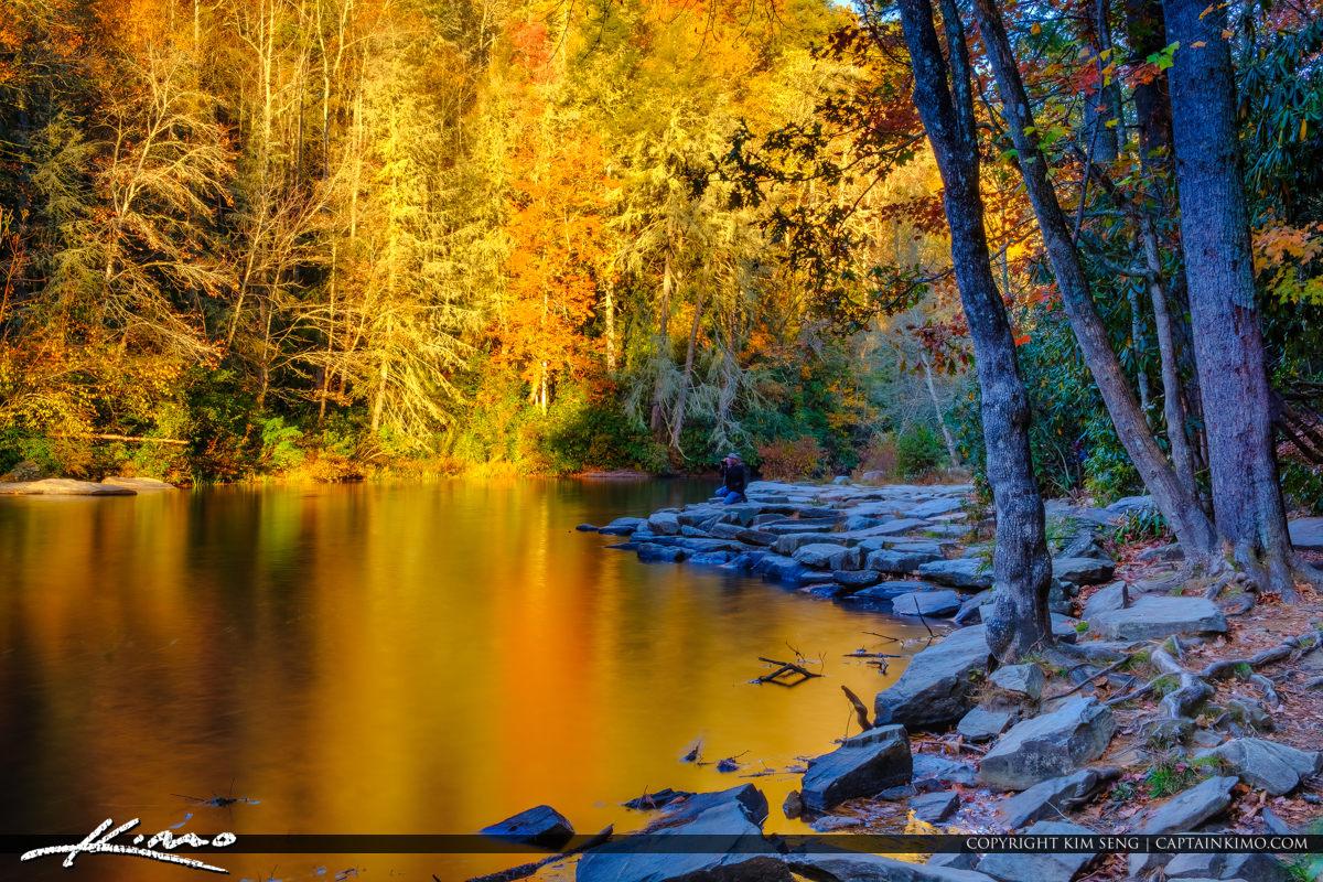 Dupont State Forest North Carolina Golden Little River