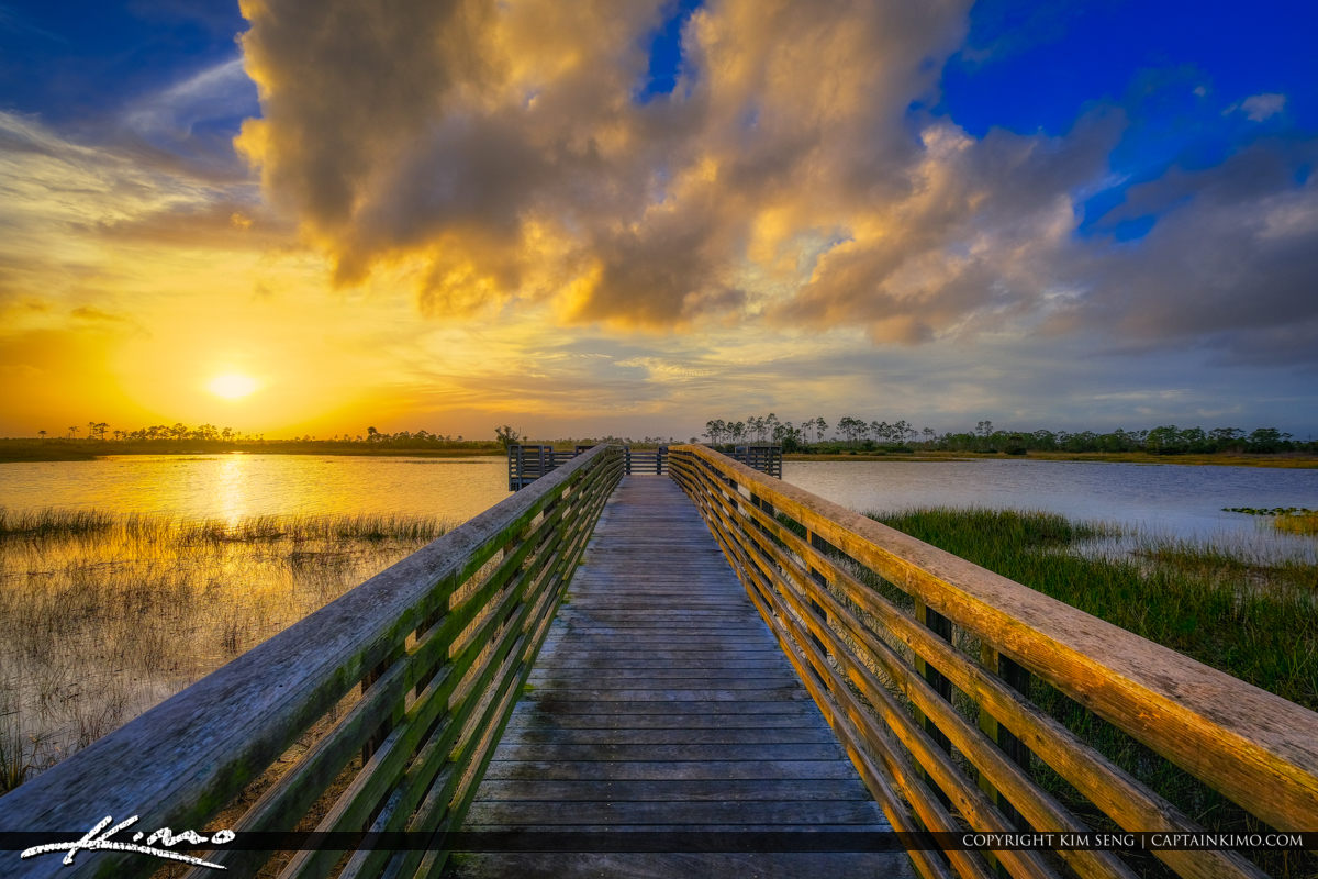 Pine Glades Natural Area Jupiter Farms Sunset Florida Preserve