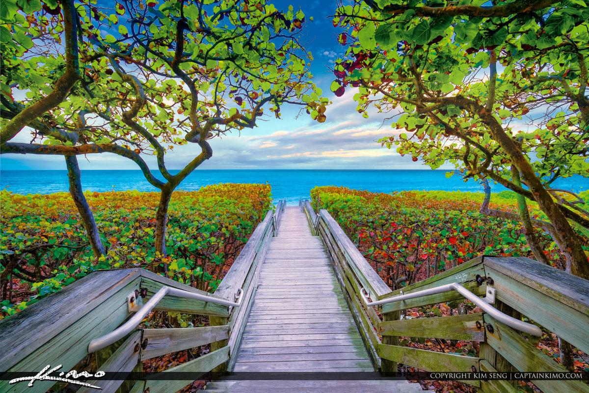 Jupiter Florida Beach Access 46 Stairway to Blue Water