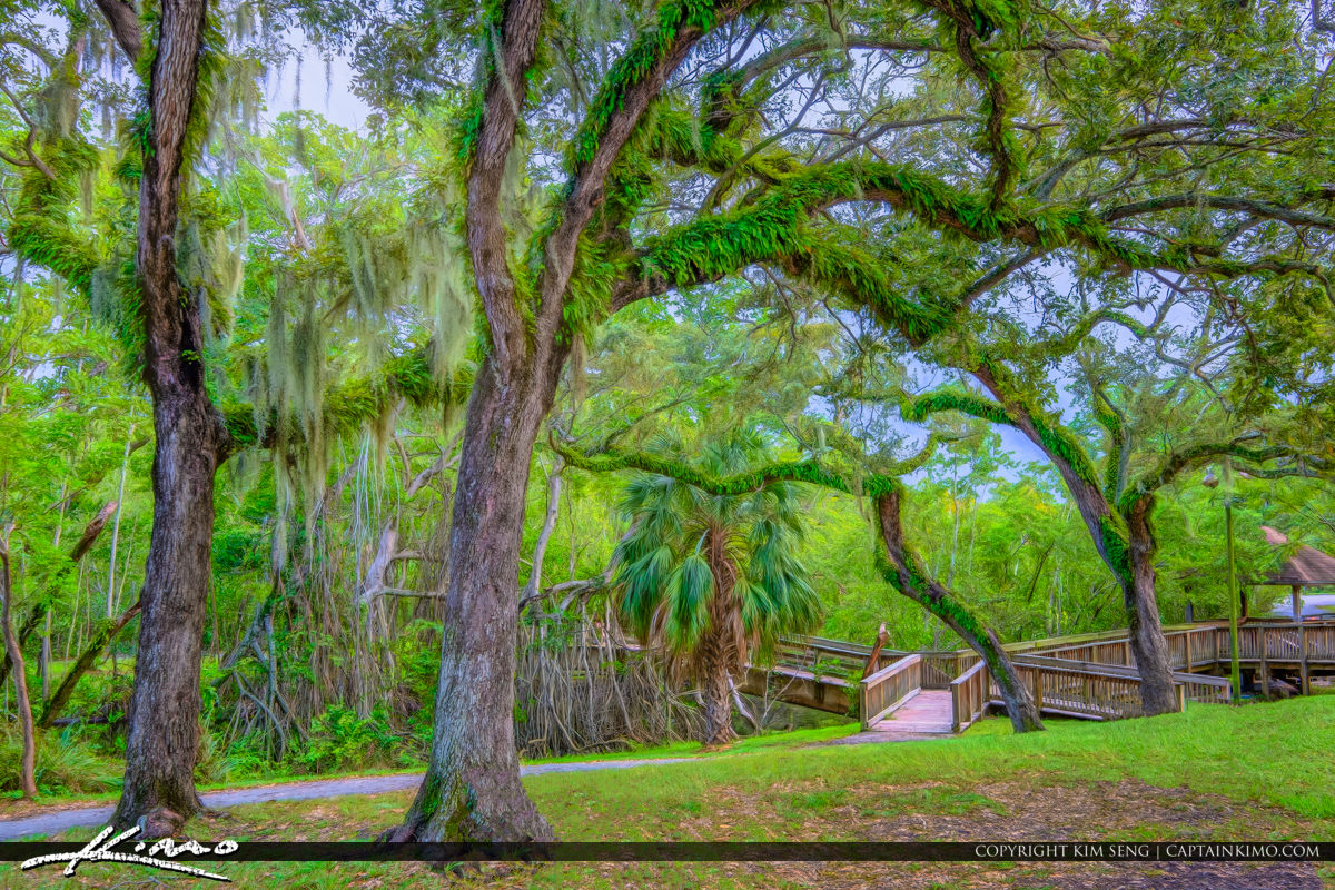 Enchanted Forest Elaine Gordon Park North Miami Florida