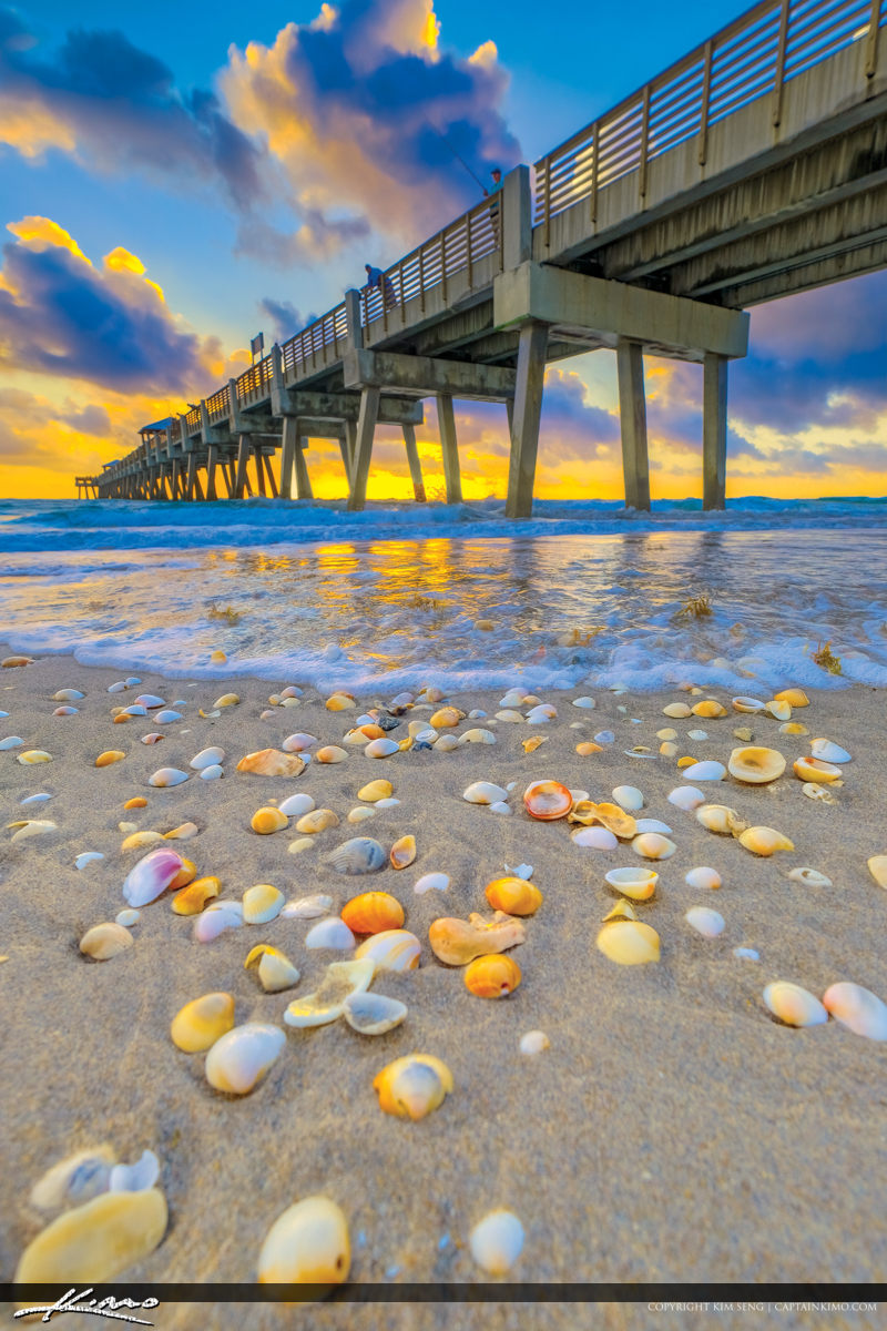 Juno Beach Pier Sunrise Shells at Atlantic Ocean