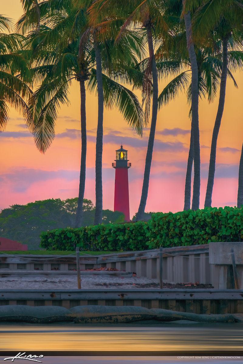 Coconut Tree Jupiter Lighthouse Warm Light