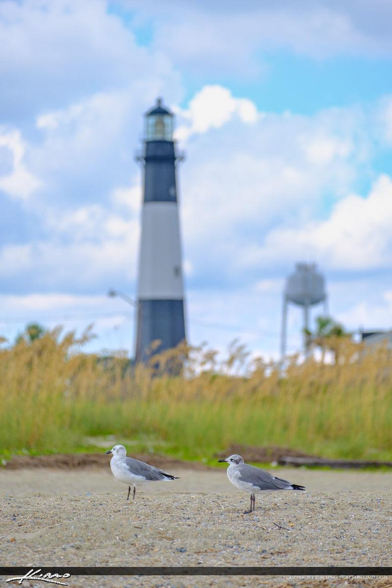 Tybee Island Lighthouse Savannah Georgia