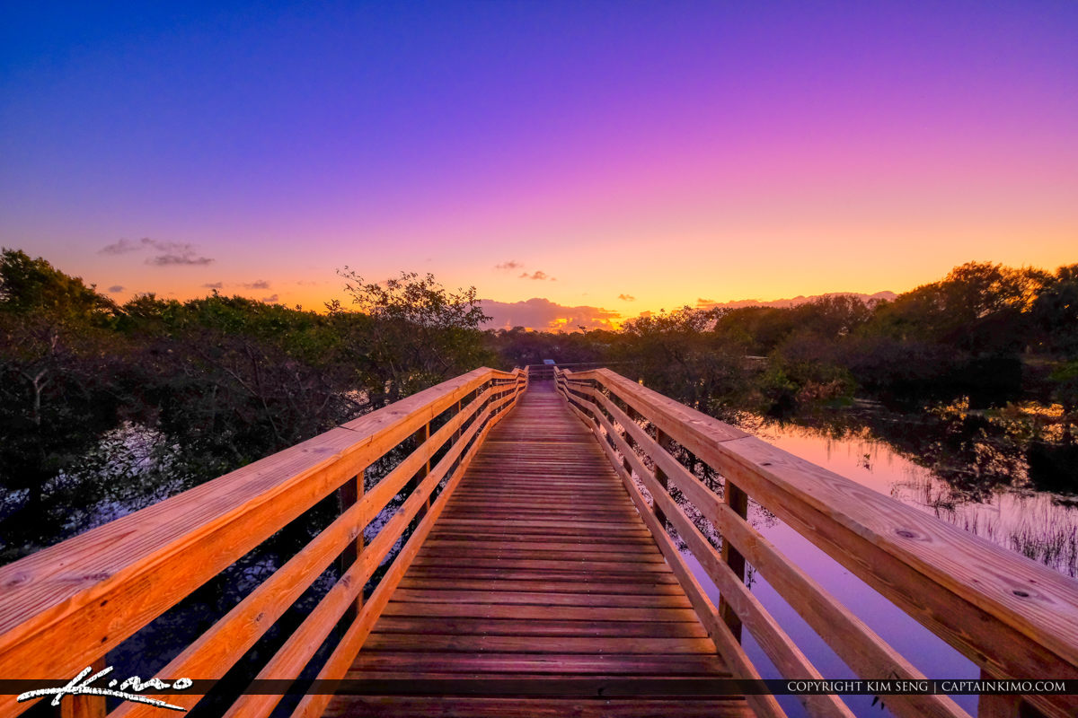 Looking Down the Boardwalk Sunrise Wakodahatchee Wetlands Delray Beach