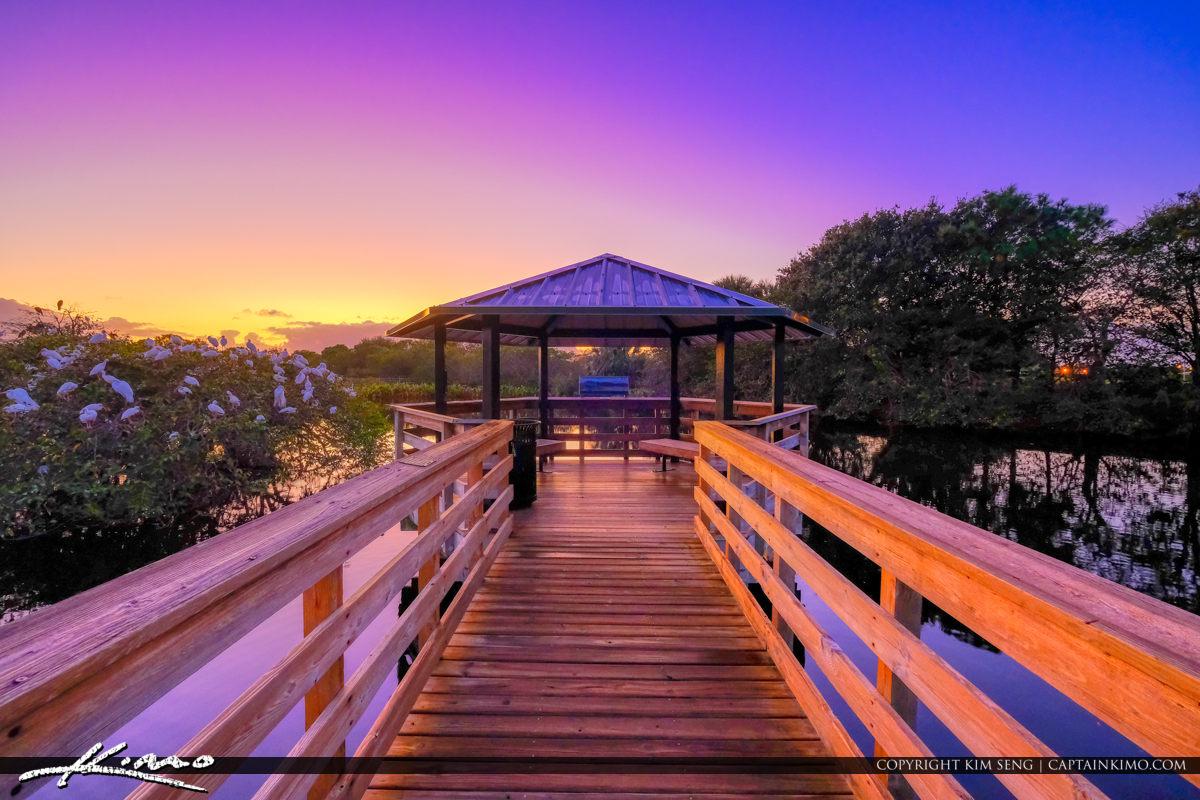 Sunrise Wakodahatchee Wetlands Delray Beach at Birding Lookout Area