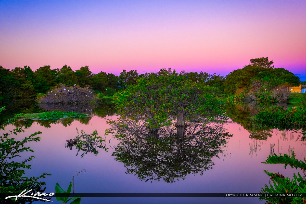 Sunrise Wakodahatchee Wetlands Delray Beach Floirda