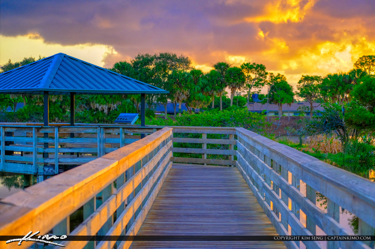 Warm Sunrise at Boardwalk Wakodahatchee Wetlands Delray Beach