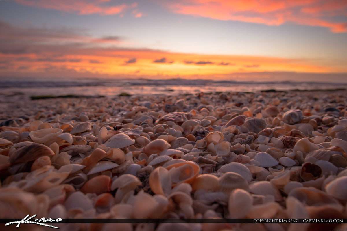 Warm Sunrise at Jupiter Beach with Shells Coral Cove Park