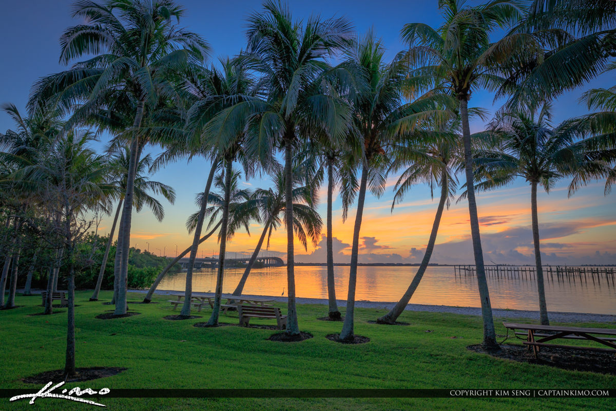 Sewalls Point Park Sunrise Coconut Trees Florida