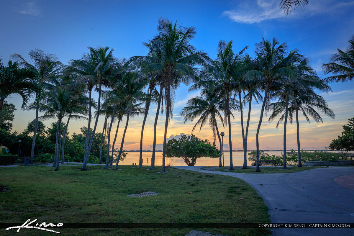 Indian Riverside Park Sunrise Coconut Trees and Water