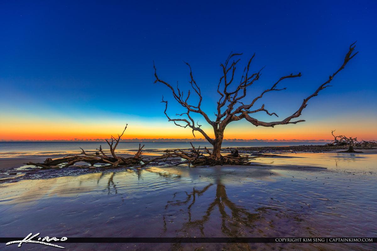 Sunrise at Driftwood Beach Jekyll Island Georgia