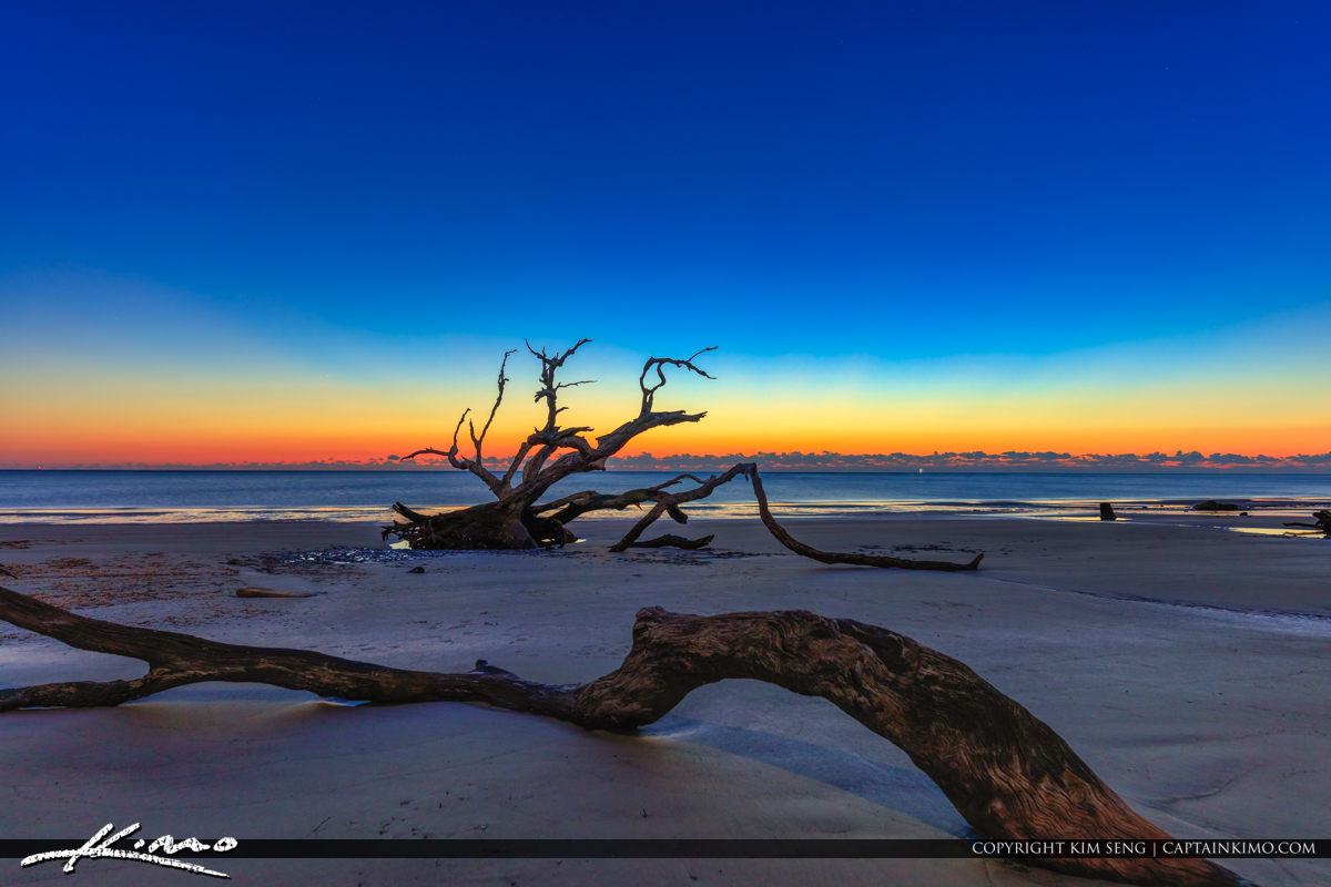 Driftwood at the Beach Before Sunrise