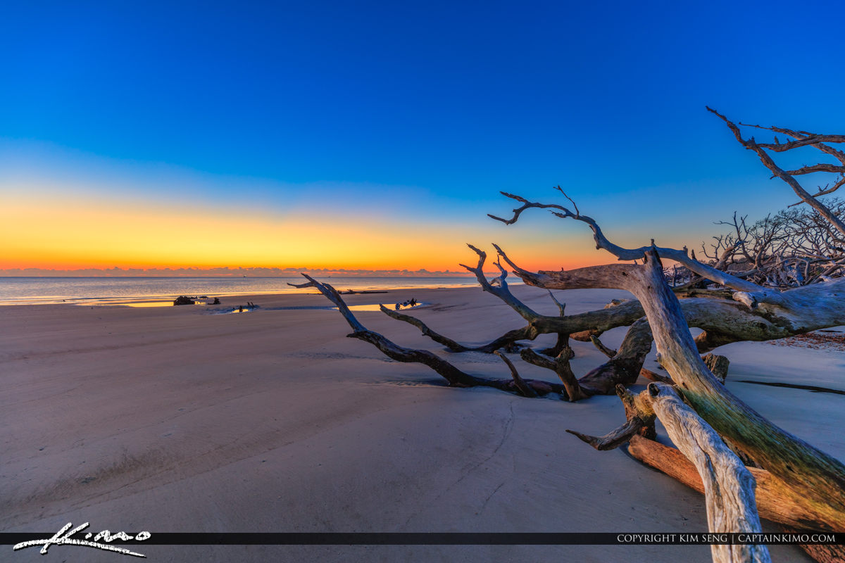 Georgair at Jekyll Island View of Sunrise at the Driftwood Beach