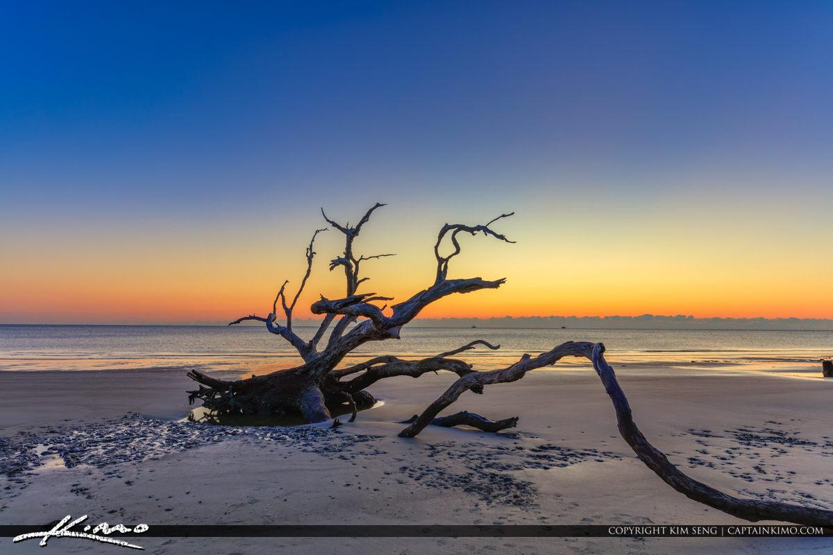 Sunrise Over Georgia at Jekyll Island from Driftwood Beach