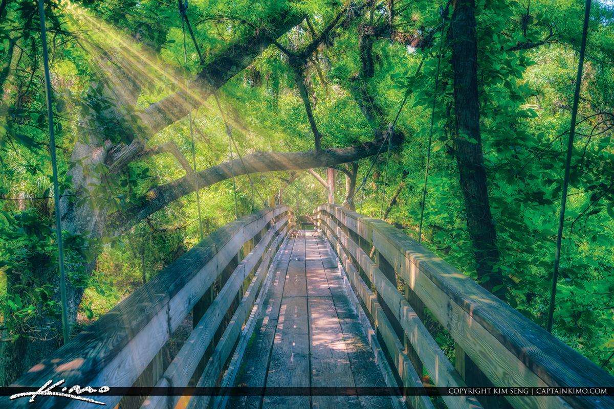 Hillsborough River State Park Suspension Bridge Thonotosassa Tampa