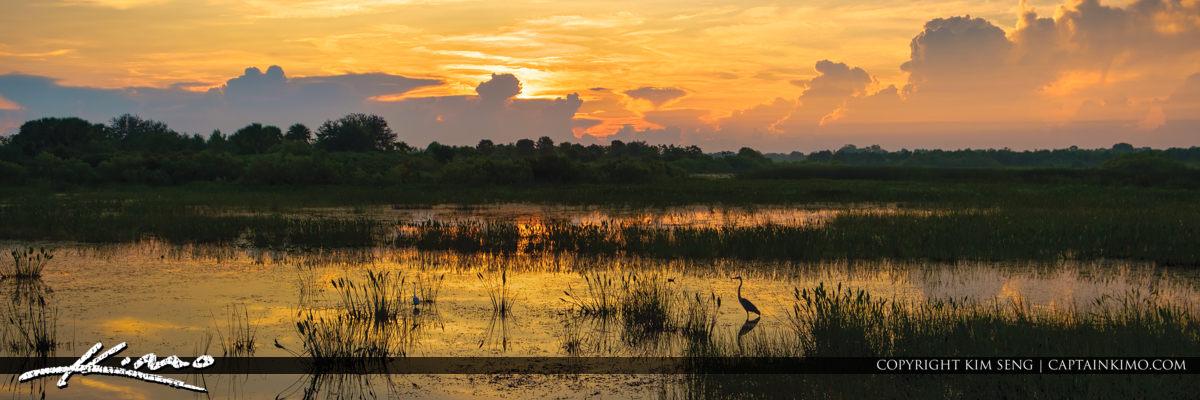 Wellington Preserve Sunrise Wetlands