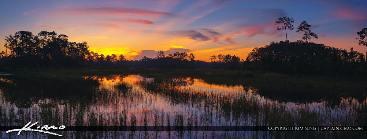 Cypress Creek Natural Area Wetlands Sunrise Jupiter Florida