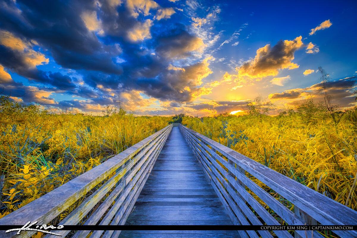 Golden Fields Sunset Juno Beach Natural Area