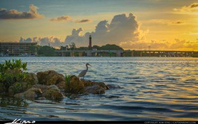 Sunrise Sawfish Bay Jupiter Lighthouse Bird Fishing