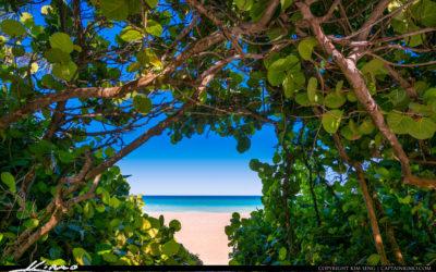 A Little Bit of Paradise Beach Entrance Carlin Park Jupiter Florida 091620