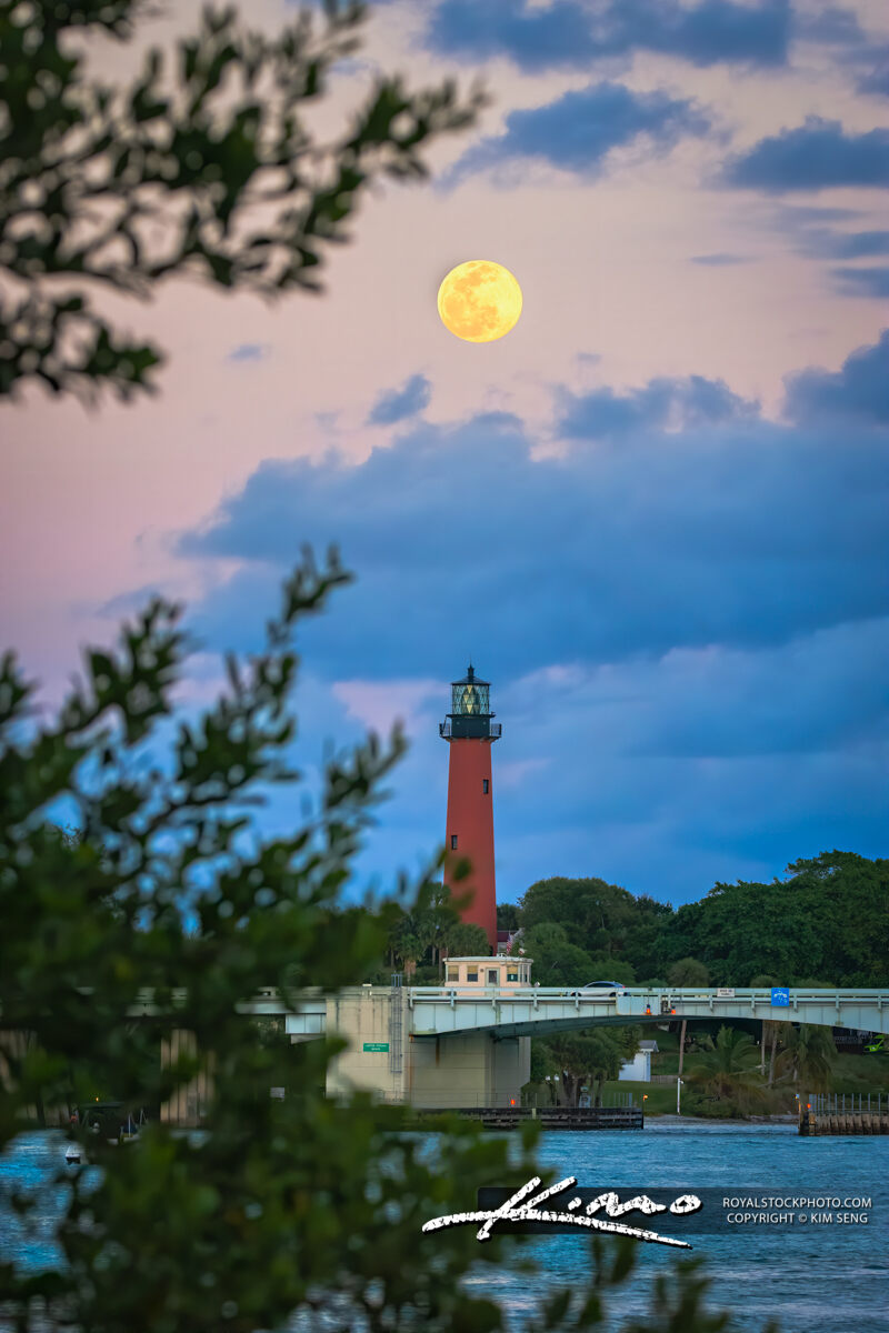 Jupiter Lighthouse Fullmoon Through the Trees