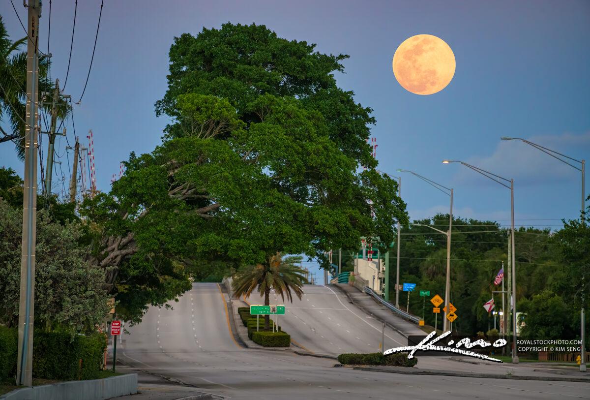 PGA Blvd Full Moonrise Palm Beach Gardens