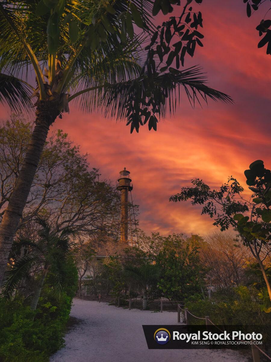 Sanibel Lighthouse at Lighthouse Beach Park Florida Coconut Tree