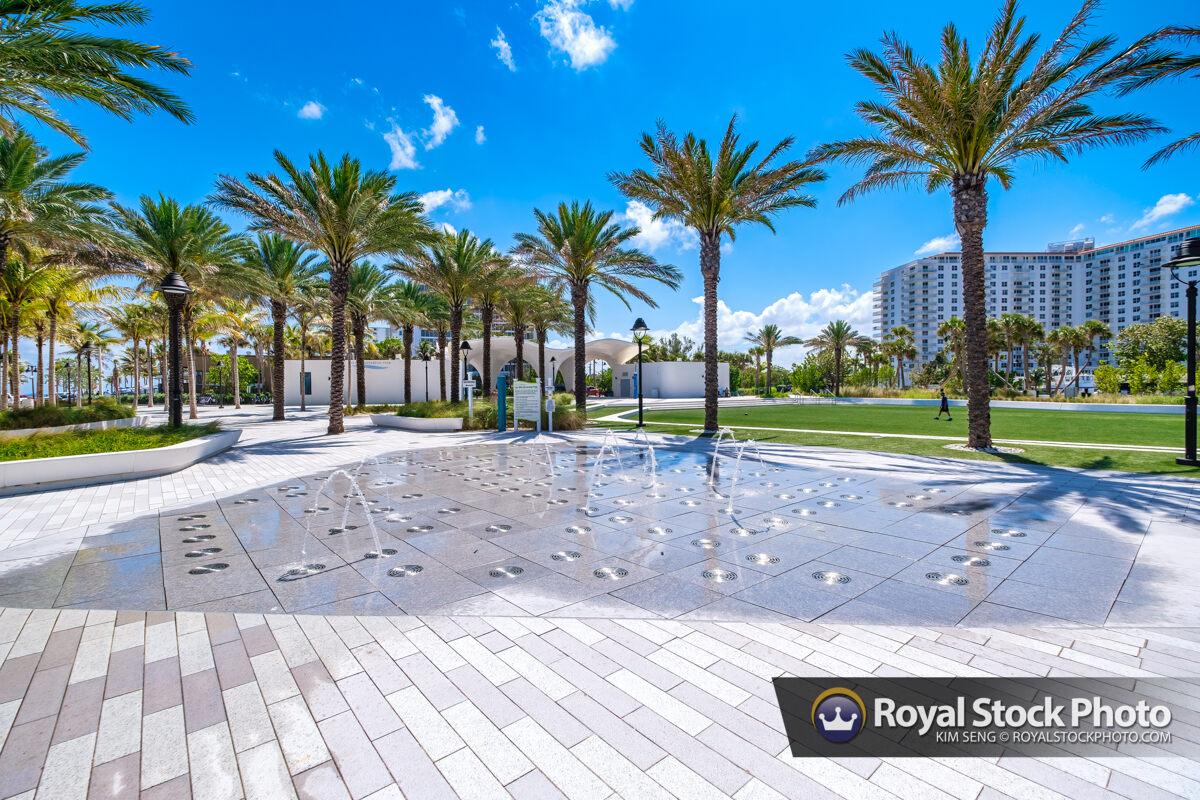 Water Fountain Palm Tree Las Olas Oceanside Beach Fort Lauderdal