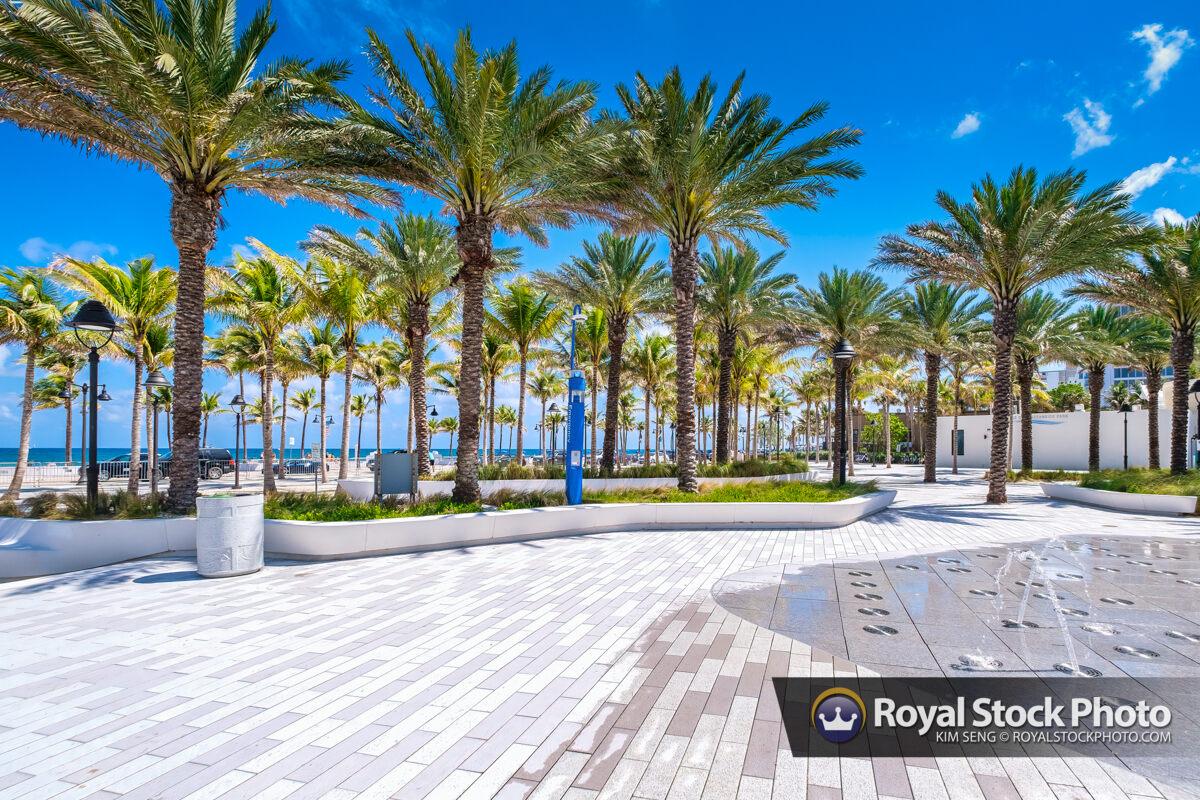 Palm Trees at Beach Las Olas Oceanside Beach Fort Lauderdale