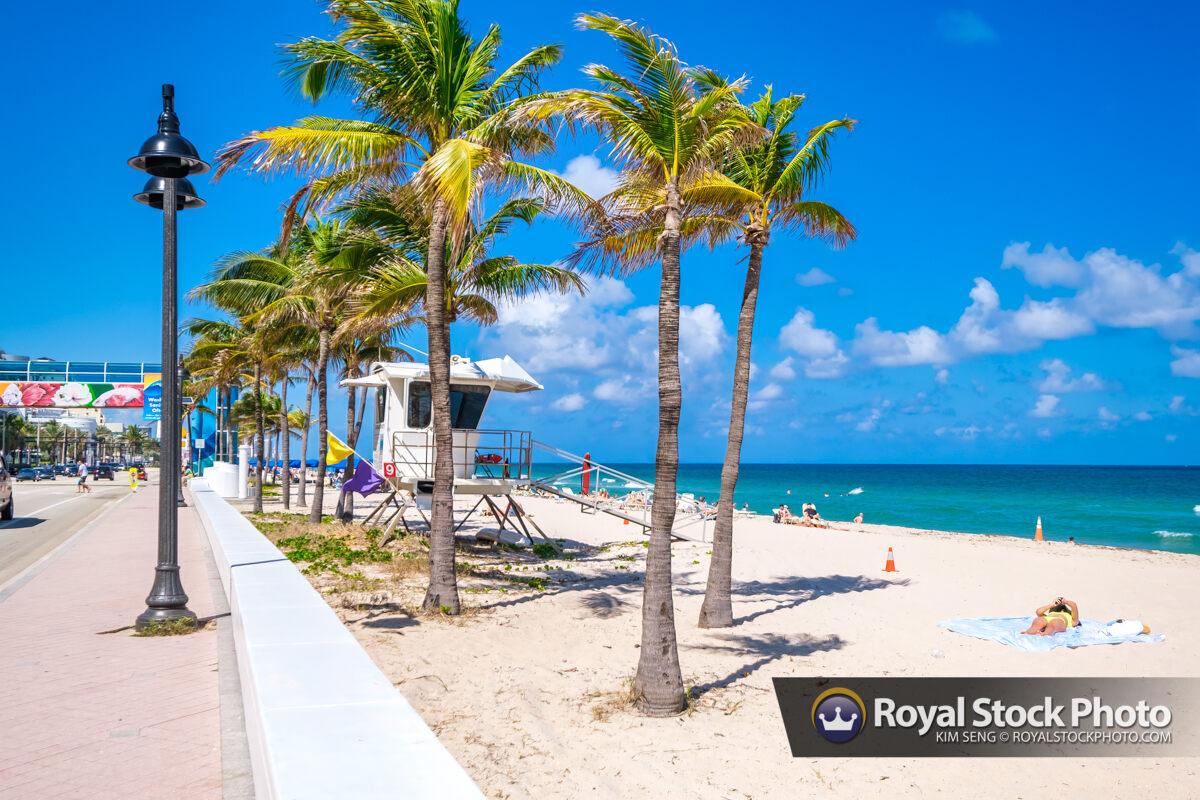 Blue Water Coconut Trees Sebastian Street Beach Fort Lauderdale