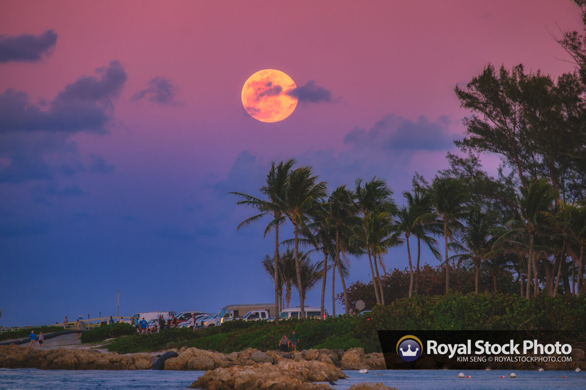 Jupiter Inlet Full Moon Rise from Dubois Park