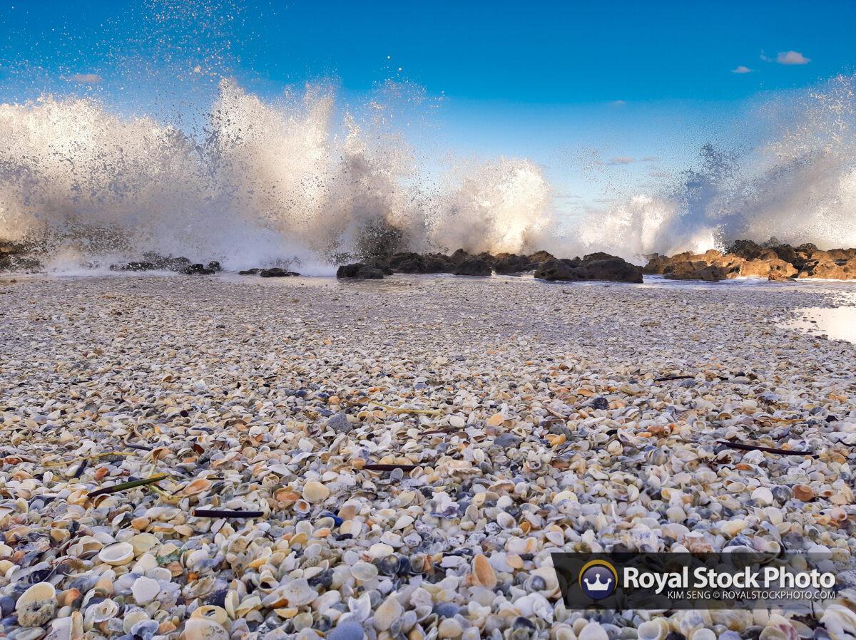 Coral Cove Park Big Splash