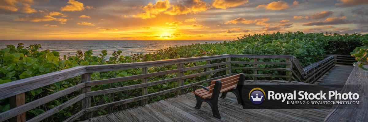 Jupiter Beach Access 48 Sunrise at the Boardwalk Bench Panorama