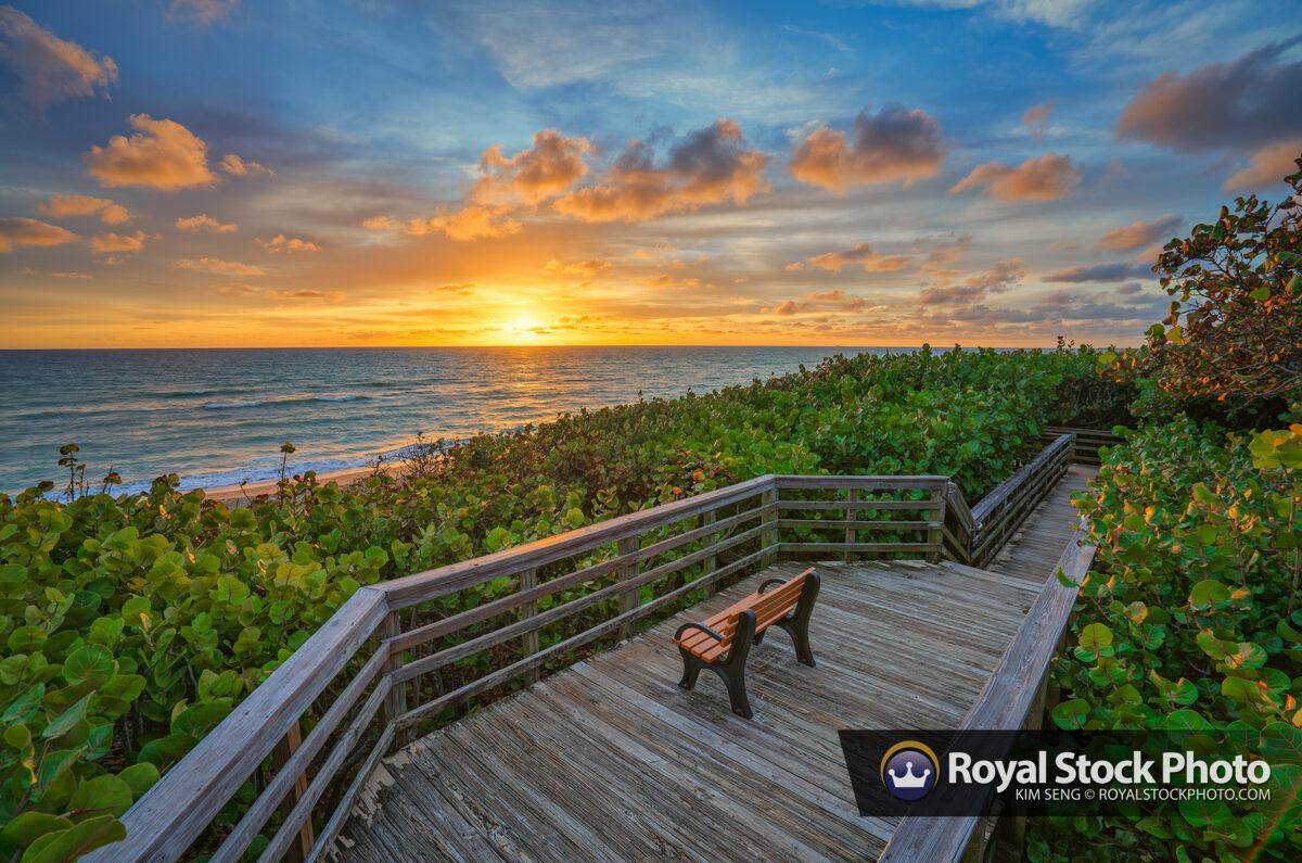 Jupiter Beach Access 48 Sunrise at the Boardwalk Bench