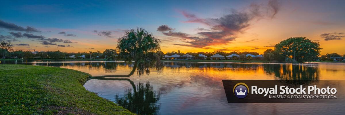 Panorama Lake Catherine Cabbage Palm