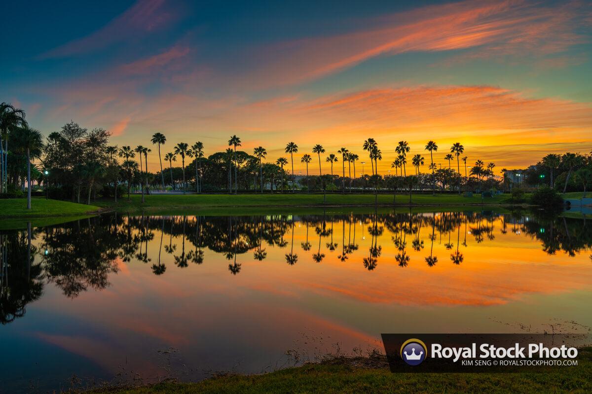 Palm Beach Gardens Sunset December 2019