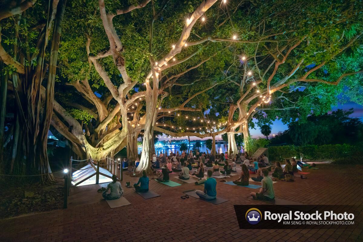 Banyan Tree Yoga at Jupiter Lighthouse